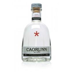 Caorunn Gin - Balmenach Distillery