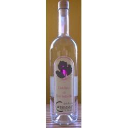 Distillato di Uva Isabella (Fragola) - Cavazza