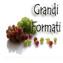 Vini Grandi Formati